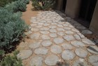 Wood Coin Patio